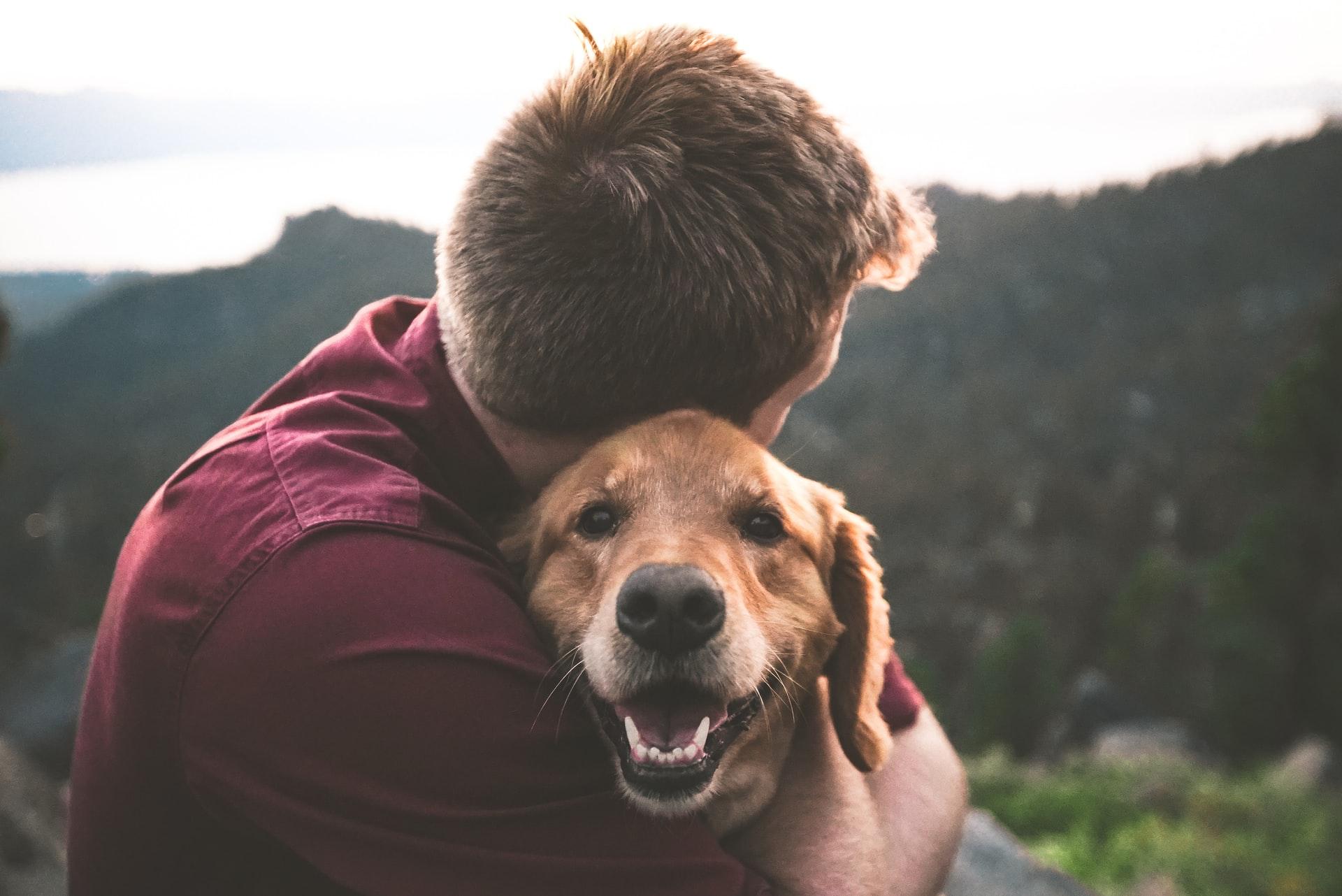 owner hugging dog